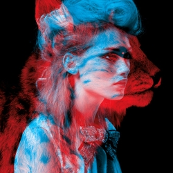 Bêtes de mode is one of the best works of  Helmo .