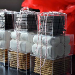 DIY Smores Kits! Adorable project ~ looks delicious and such nice simple packaging