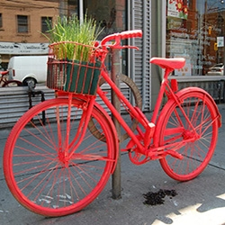The Good Bike Project team turns abandoned rusted bicycles of Toronto into pieces of art which brighten up the city.
