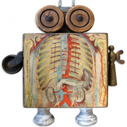 One of nine fascinating imaginative small anatomical assemblages by Suzanna Scott currently on display.