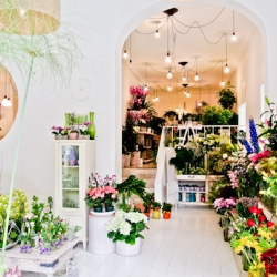 Margarita se llama mi amor is a flowers shop located in Madrid where you can find a place full of good energy.