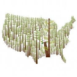 "New print by Amy Ruppel - ""This Land Is Your Land"" - inspired by and benefits American Forests."