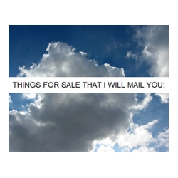 "In 'Things For Sale That I Will Mail You"", artist David Horvitz offers a long  list of tasks he'll do for you - ranging from taking a picture of the sky to sending you envelopes of ""star sand"" from Japan."