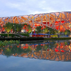 ARTINFO's top 5 (actually, 6) stories from an exciting and turbulent year, including a photo gallery of some of the corresponding images like this one of Beijing's National Stadium.