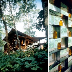 Marlon Blackwell's Moore Honey House - set in the woods near a residential projects for the same client, the honey house serves as a car port and simple shed for the making and storing of honey.