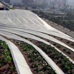 SYNTHe is an urban green roof in LA developed by SCI-arc professor Alexis Rochas and his students.