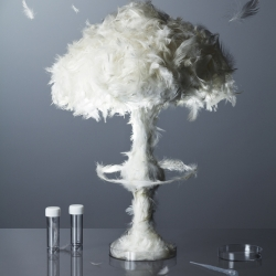 A sculpture of a mushroom cloud made from feathers for an article on the threat of bird flu in the latest issue of Scientific American. By Kyle Bean, Photo: Sam Hofman.