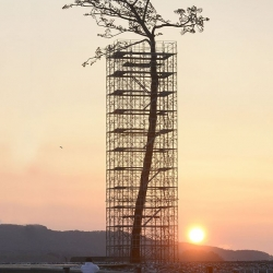 "Monumental tree sculpture memorializes the ""miracle pine"" as a sign of recovery for Japan two years after disaster"