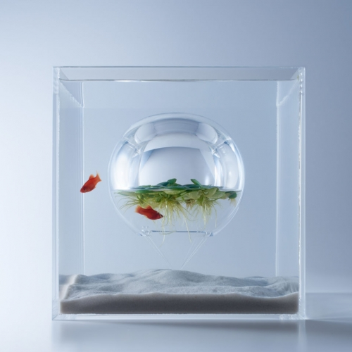 Japanese designer Haruka Misawa has conceived a series of sculptural fish tanks.