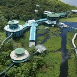 Amazon, Brazil. The Towers Hotel, has a complex 4Km network of aerial bridges, with 20meters high! Perfect for all Indiana Jones lovers!