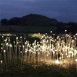 Bruce Munro's Field of Light installation at the Eden Project in Cornwall, England.