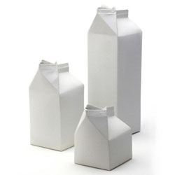 Ricochet Studio cast these 'Best Before' Milk Cartons in vitrified porcelain, using the original containers as a mold.