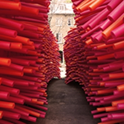 Delirious Frites, hundreds of pool noodles invade an abandoned alley in Quebec City, Canada. An architectural installation by Les Astronautes.