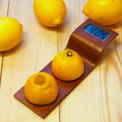 Anna Gram's artsy Citrus Clock combines the magic of stellar design with basic science in order to create a timepiece that's powered by lemons