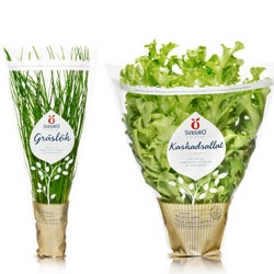 Also by Amore for Svegro (see post #17205) - great packaging for herbs/greens inspired by potted plants.