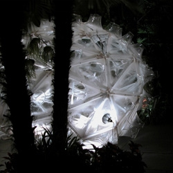Gernot Riether's design is a series of glowing spherical enclosures sited within the hidden courtyards of the city's distinctive French Quarter.