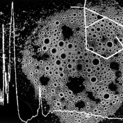 Spit Prints-