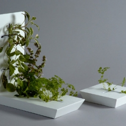 Yourban Garden is a system of pieces which permit to grow plants into 3cm thick, landless and with little maintenance.