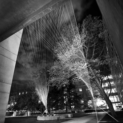 The String Tunnel is an episodic, three-dimensional spatial sequence constructed entirely out of nylon thread connecting MIT's Infinite Corridor to the Kendall T Station.
