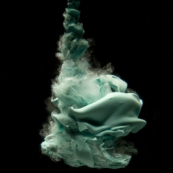 "Detroit photographer's most recent photo series, shot with a macro lens. He was inspired by the challenge of taking a free flowing form and capturing its organic transformations underwater. While only 4"" tall, they take on shapes and lives of their own."