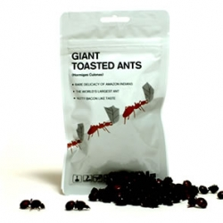100% edible products by EDIBLE includes ants, tarantulas, and hornets. [Site temporarily down]