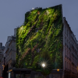 'L'Oasis d'Aboukir' by Patrick Blanc for the Paris Design Week in Paris, France.