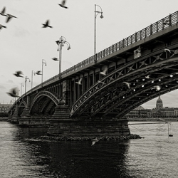There's something incredibly beautiful and romantic about black and white photographs of bridges from around the world.