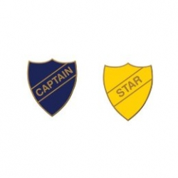 Adorable Old School Star and Captain Badge Pins