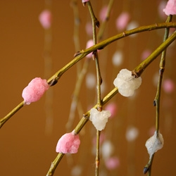 Mochibana is a traditional New Years decoration in Japan made of colored mochi on a willow branch to simulate plums blossoms. Traditionally food was a central design element of decorations.