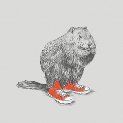 """...if a woodchuck, could wear chucks!""  by David Schwen."