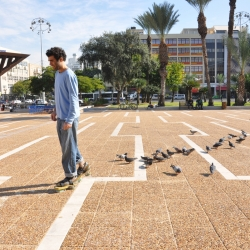 Israel based designer Roi Vaspi Yanai provokes the relationship between people and pigeons,
