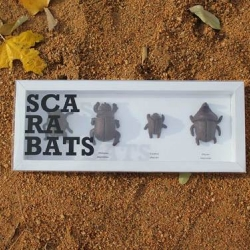 'Scarabats' by Jordi Rabal. The packaging contains four chocolate beetles.
