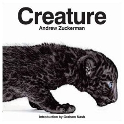 Andrew Zuckerman's upcoming book Creature... incredible imagery of animals ~ with a teaser making of the book, and video of the photoshoot to keep you going until you can see the real thing Oct 07.