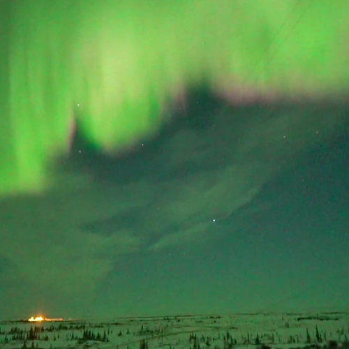 Aurora Borealis (Northern Lights) Live Cam.  Launch yourself to northern Canada where the live image and sound brings the chill of winds and a view like no other. (View the Snapshot Gallery to see what you've missed)