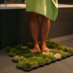 Moss Carpet for bathroom created by Nguyen La Chanh.