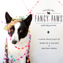 Fancy Paws! In LA? Have a pup?  Our friends at Birds of A Feather are teaming up with Smitten Studio to have a day of doggie photoshoots on March 10th at LA's The Forge Studios to raise money for NKLA!