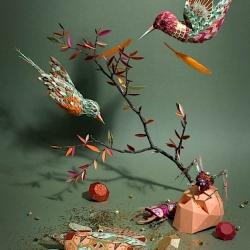 Cabinet de Curiosites by Zim & Zou.