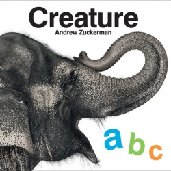 Creature ABC ~ perhaps the ultimate kids gift book? Coming out July 22nd ~ the alphabet version of Andrew Zuckerman's amazing Creature book