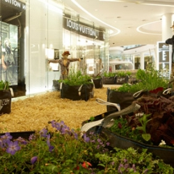 louis vuitton commissioned jeremy deller to produce a temporary urban garden at their london store - gorgeous!