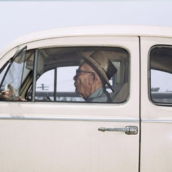 By attaching a camera to the passenger side window of his car, photographer Andrew Bush took photos of his subjects whilst driving  beside them in and around LA.