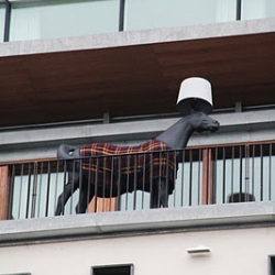 On the balcony of Hotel Avalon, Gothenburg, you can find these horses from Moooi, designed by Front. In the winter they have a nice warm throw.