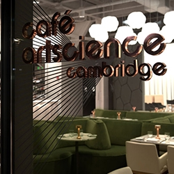 Strategically positioned between Harvard and MIT, Café ArtScience designed by Mathieu Lehanneur opens its doors.