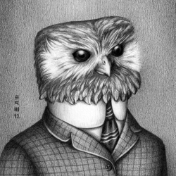 High-quality prints and posters of the darkly delightful drawings by Brian R. Williams. His latest series of drawings feature birds dressed in clothes from the year they went extinct.