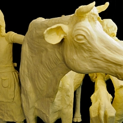 A Hit at the Straw Poll, Iowa's Butter Cow Sculpture Enters the Republican Primaries.