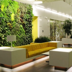Michael Hellgren plants vertical gardens on any kind of wall.