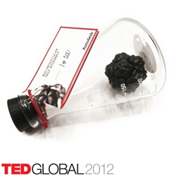 The BioMolecular Self-Assembly project is a collaboration between Skylar Tibbits, Arthur Olson and Autodesk Research. 500 custom glass self-assembly kits were distributed at TED Global 2012 in Edinburgh last month.