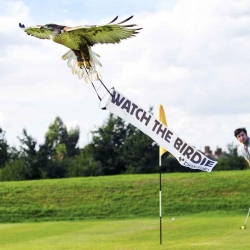 Bird-vertising takes off at The Ryder Cup as Betfair recruits a flock of eagles and hawks to fly mini banners of support for Team Europe over the Celtic Manor course.