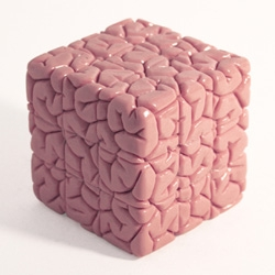 Brain Cube - Jason Freeny has sculpted a fully functional Rubik's Cube in the form of a brain...