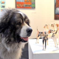 The Affordable Art Fair Battersea has opened its doors to culture hounds as dogs of all shapes and sizes accompanied their arty owners to the fair in London.