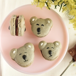 Super cute Koala Macarons - filled with salted caramel and milk chocolate ganache